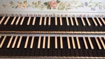 TDFW-Bach-Harpsichord.jpg