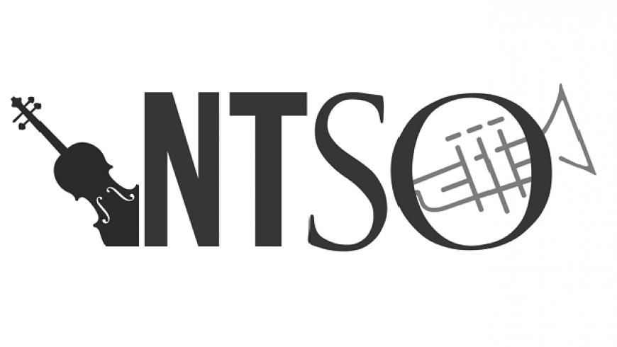 NTSO header.png