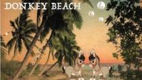 Donkey.Beach.Header.jpg